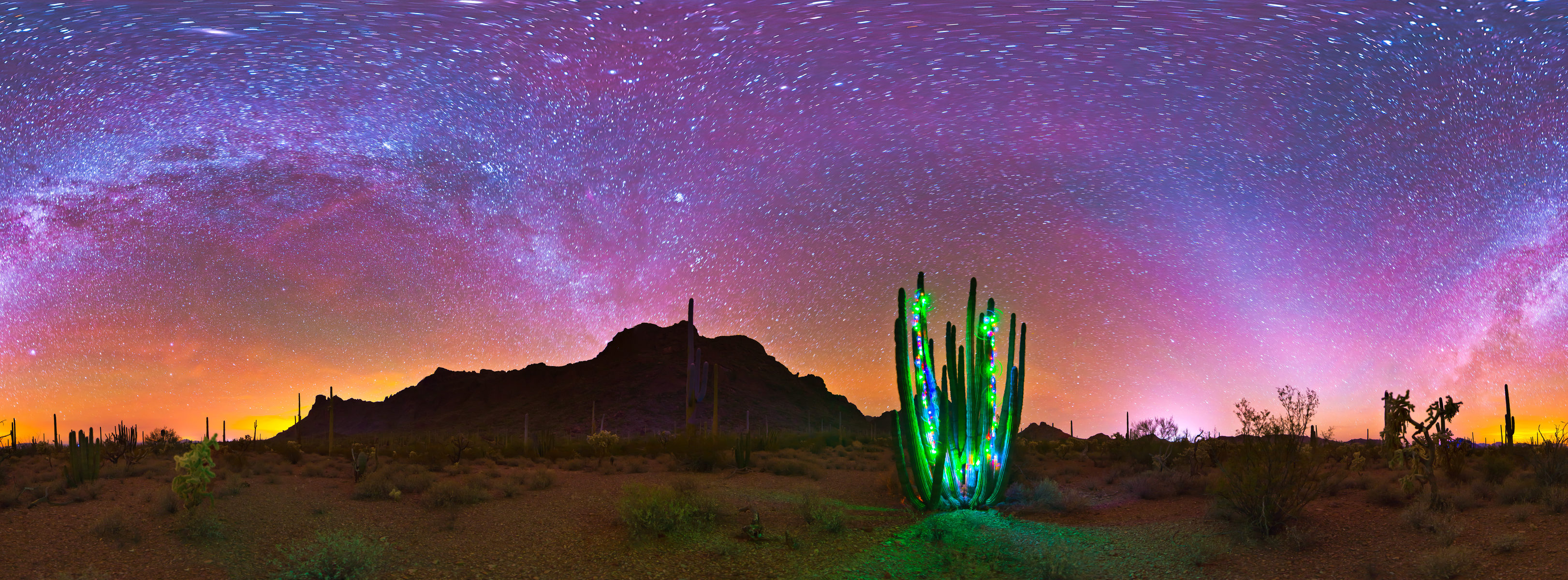 arizona christmas at organ pipe cactus nm alamo wash 360